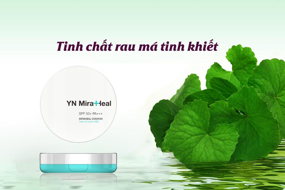 Tinh-chat-rau-ma-trong-yn-miraheal-cushion