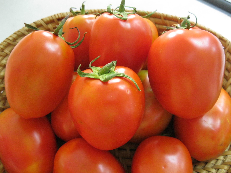 Cà chua là nguyên liệu làm đẹp bổ - rẻ chị em có thể tận dụng