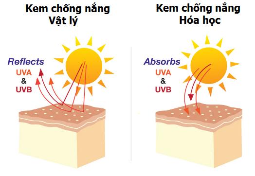 Phân loại kem chống nắng theo nguyên lý hoạt động