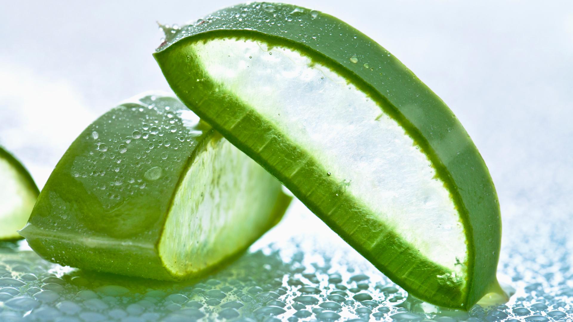 Kem chống nắng cho da khô cần chứa nhiều thành phần dưỡng ẩm chiết xuất an toàn từ thiên nhiên